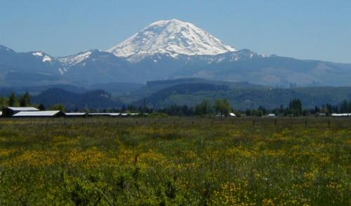 Enumclaw � Local and Long Distance Moving Companies
