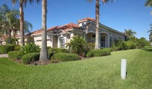 Palmetto � Local and Long Distance Moving Companies